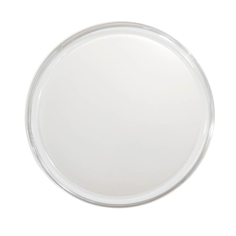 GLOBE FROSTED-40W - E27