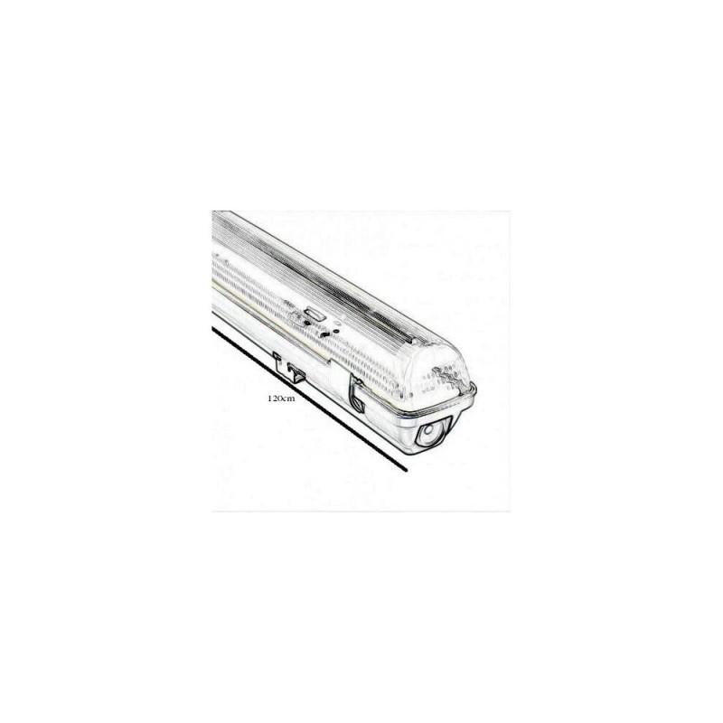 MARA Orange-15W