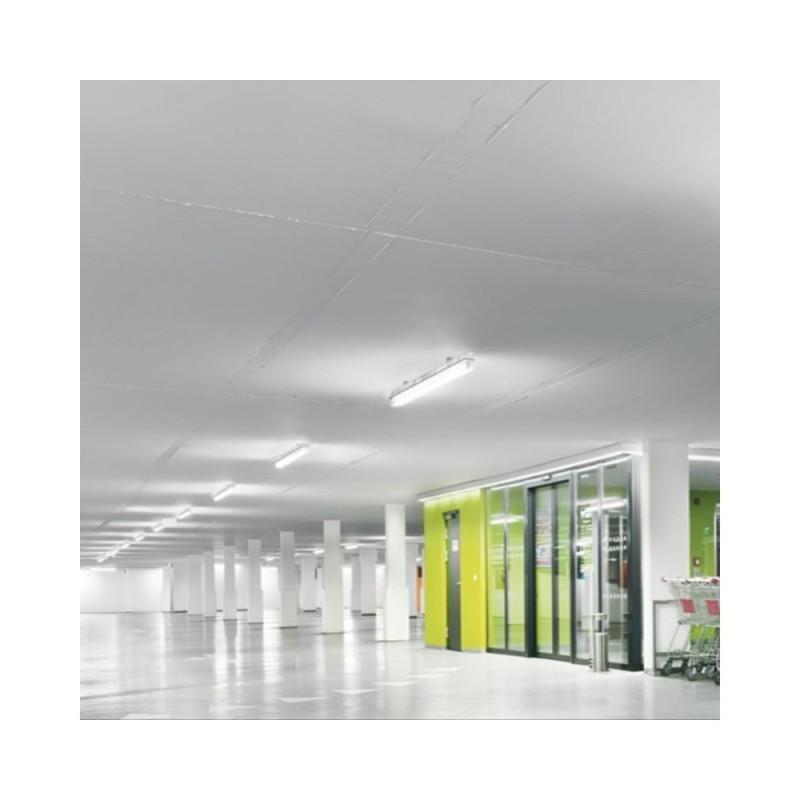 NOVA Purple-6W