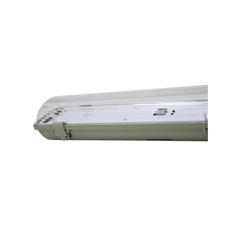 PRIZMA Purple-6W